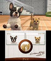 nintendogs + cats �ȥ����ס��ɥ� �� New�ե��