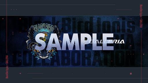 画像集#004のサムネイル/GALLERIA,プロチーム「BlackBird Ignis」コラボモデルのゲームPC発売