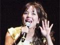 「PERSONA MUSIC FES 2013〜in日本武道館」をレポート。熱狂のステージに「来年はドーム!」の声も