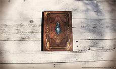画像集#010のサムネイル/「FFXIV」のSSをまとめて自分だけの本が作れる。オンデマンド印刷サービス「カスタムオーダーフォトブック メモリーズオブライト」が開始
