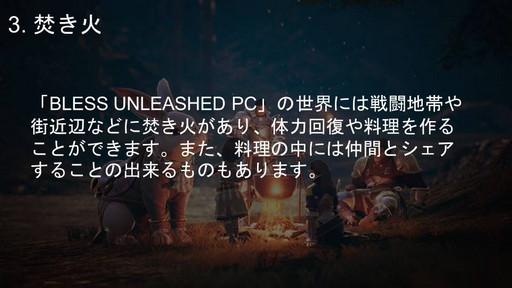 画像集#013のサムネイル/PC向けMMORPG「BLESS UNLEASHED」実機ゲームプレイ実況&コンテンツ説明会をレポート。初公開の日本語クライアントで見た最新情報を紹介